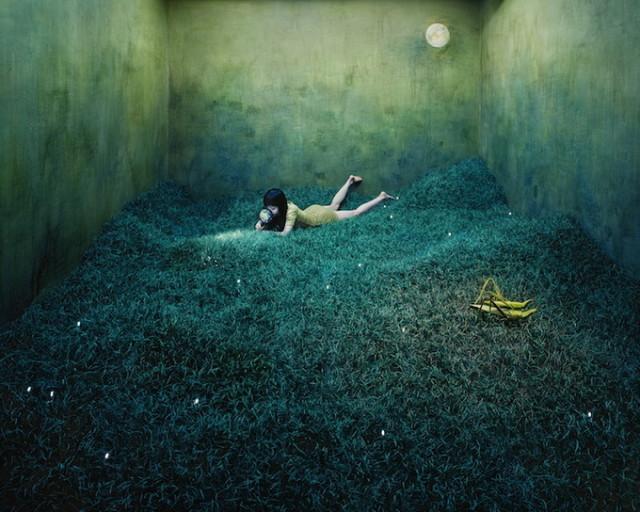 escape-into-world-of-fantasy-13