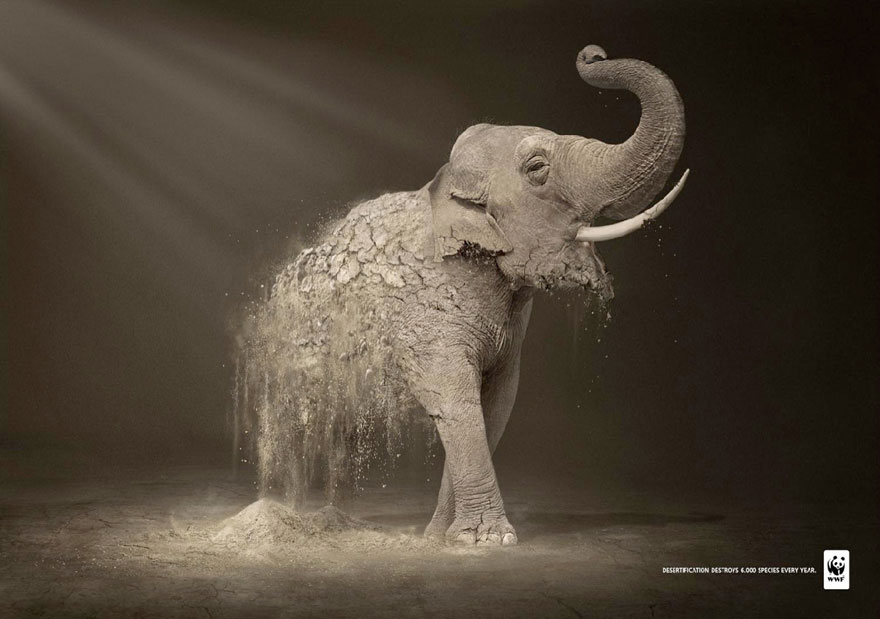 animals in advertising - 27