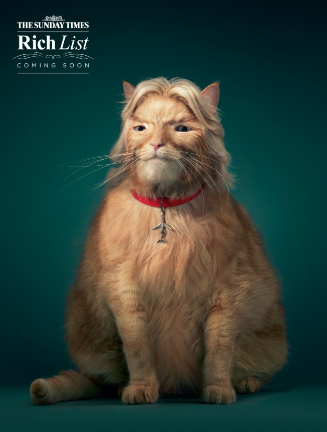 animals in advertising -41