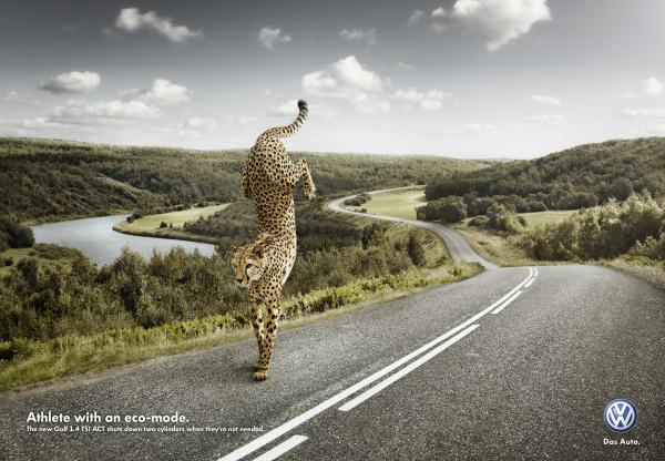 animals in advertising -6